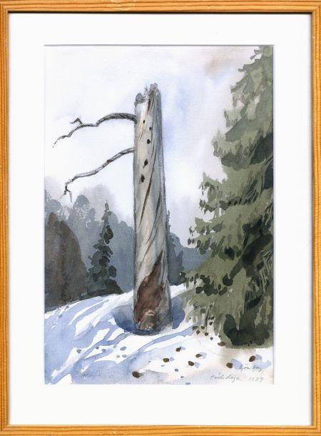 Torraka som boträd påskdag 1984