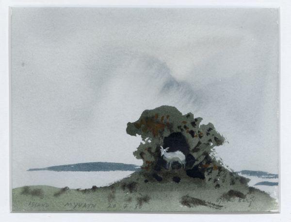 Myvatn och geten i busken, Island 1980