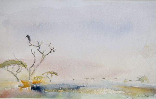 Afrika Maraboustork 1987